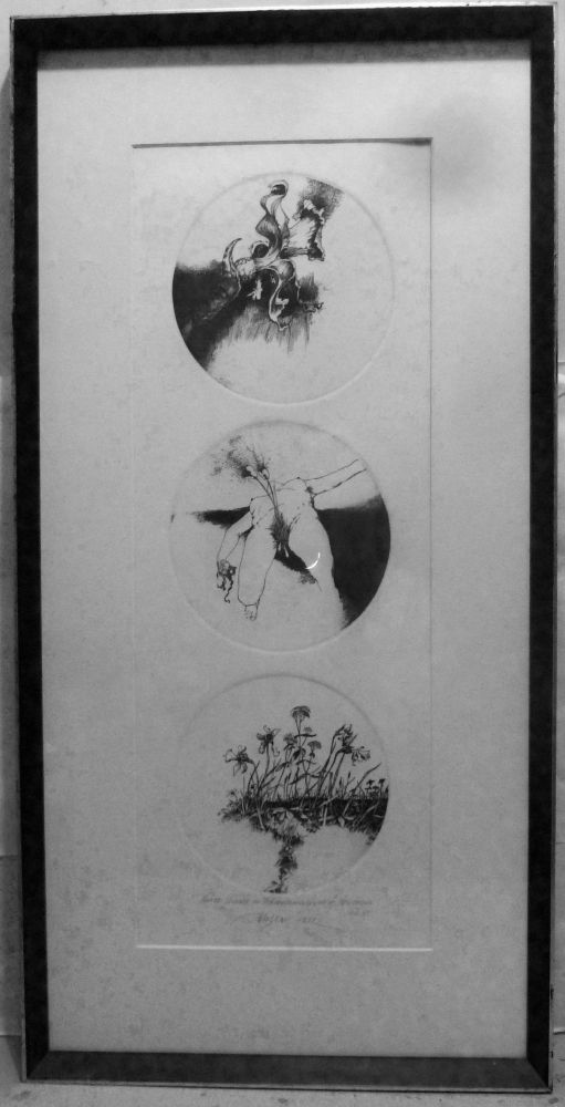 Three Phases in the Metamorphosis of Narcissus. Barry Moser.