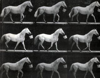 Motion And Document Sequence And Time; Edward Muybridge And Contemporary American Photographs....