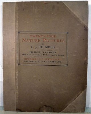 Twenty Four Nature Pictures; Produced in Facsimile. Edward Julius Detmold